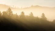 The sun rising over the coastal mountains of Oregon.