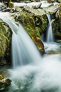 Sugar Loaf Stream, Routeburn Track, Mount Aspiring National Park