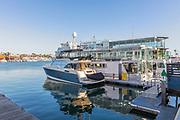 Boats Docked in Newport Marina of Newport Beach