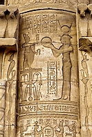Hieroglyphics, Dendera Temple (Temple of Hathor), Dendera, Egypt