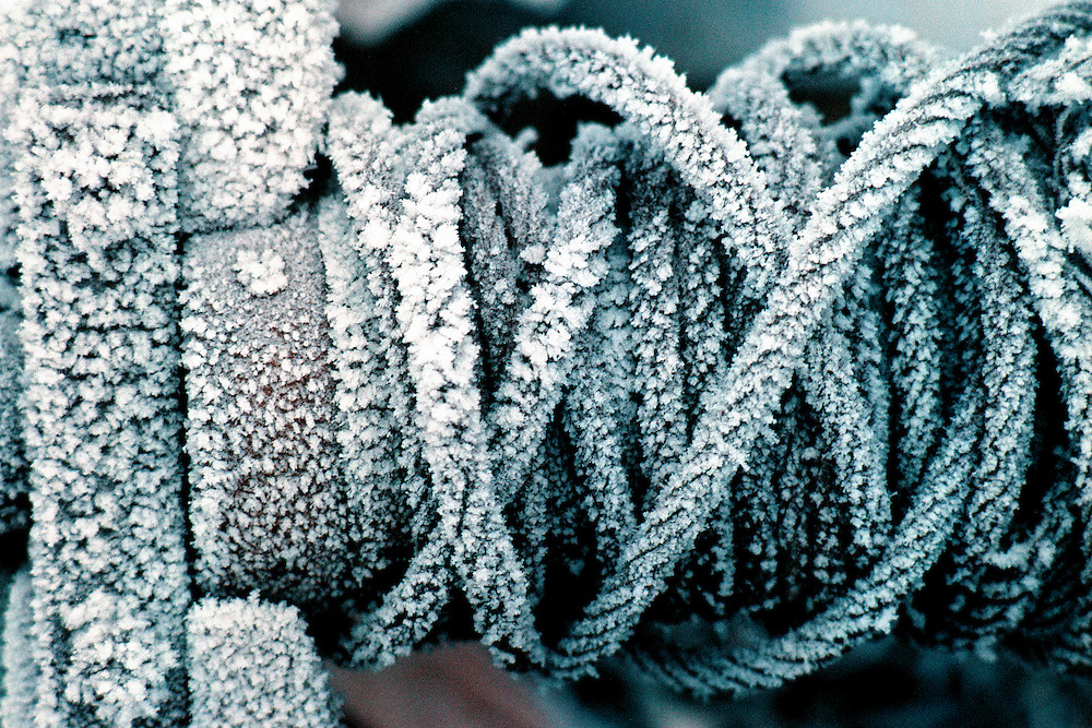 Skåtøy, Telemark, Norway, 20071228: Frost on a steel cable. Photo: Orjan F. Ellingvag/ www.camera-eye.com