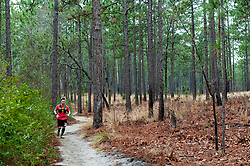 January 19, 2019 - Southern Pines, North Carolina, US - Jan. 19, 2019 - Southern Pines N.C., USA - Matthew Carroll, Fort Bragg, North Carolina, completes a lap during the 10th Annual Weymouth Woods 100km ultra marathon at the Weymouth Woods Nature Preserve. Runners needed to complete 14 laps of the 4.47 mile course for 62.58 miles in under the 20-hour time allotment. (Credit Image: © Timothy L. Hale/ZUMA Wire)