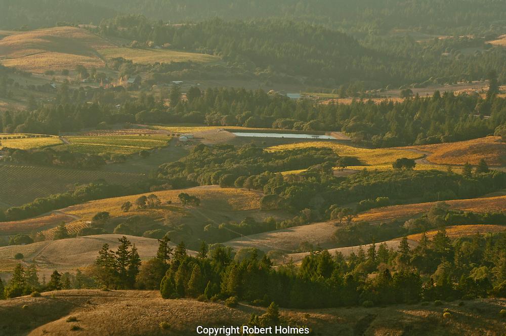 Navarro Vineyards, Anderson Valley, California