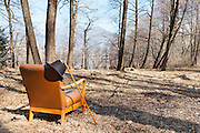 Vintage armchair with hat in an autumn forest, scene