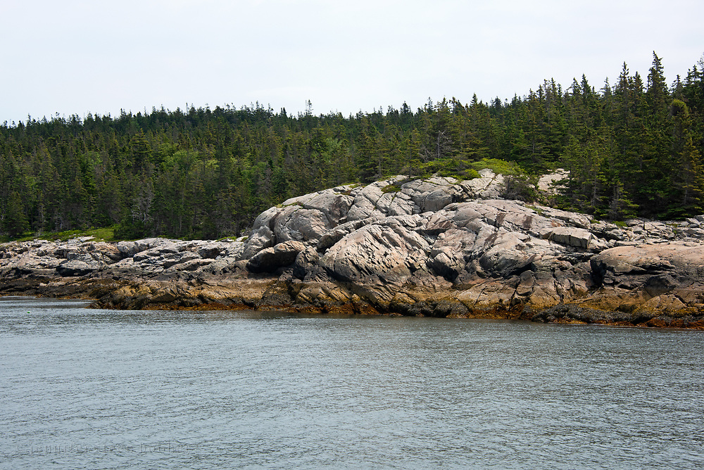 Granite ledges and thick conifer woods are typical of the shoreline on Isle au Haut, Maine