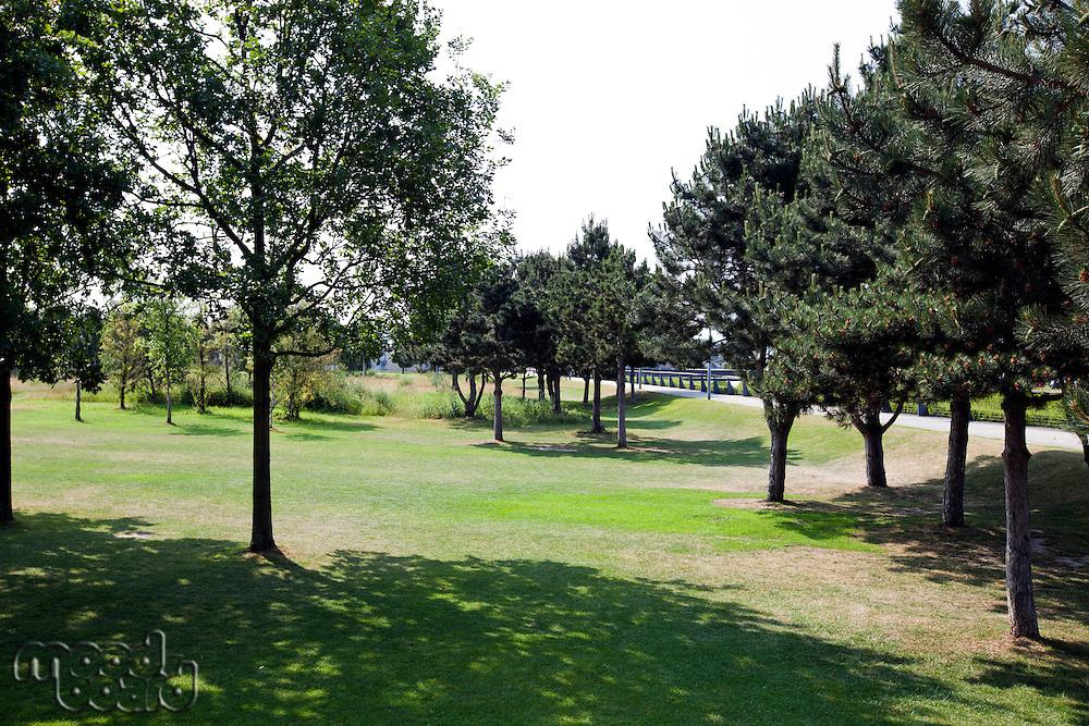 Peaceful London Park