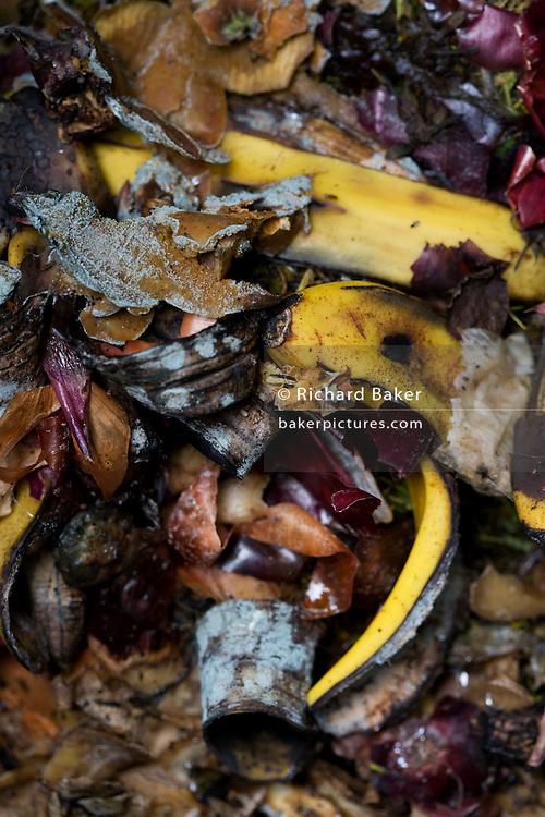 Detail of organic vegetable and fruit matter decomposing inside a home garden composting bin.
