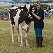 CR0002852 Kinross Show. Pat Wilson with Mincio Joanne, Second Calver, Dairy Interbreed Champion (Holstein/Fresian) from Carskerdo Farm, Cupar.11 Aug 2018 © Copyright photograph by Tina Norris. Contact Tina on 07775 593 830 info@tinanorris.co.uk All print sales via Tina Norris. www.tinanorris.co.uk http://tinanorris.photoshelter.com