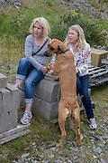 Girlfriends look at a pet dog's paws during a day out in wales.