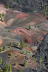 Painted Dunes with pine trees, Lassen Volcanic National Park, California, United States of America