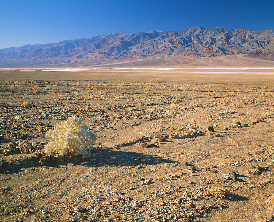0604-1008 ~ Copyright: George H. H. Huey ~ Alluvial fan with salt pan and Panamint Mountains. Death Valley National Park, California.