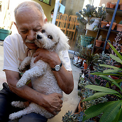 Freddy Parrales with his dog, Bella. Parrales was in his garage working on his succulents when he suddenly had a stroke. Bella, a Shih Tzu/poodle began jumping and scratching, barking and running back and forth to the door to get his wife's attention in La Puente, Calif., Wednesday, Nov. 26, 2014.
