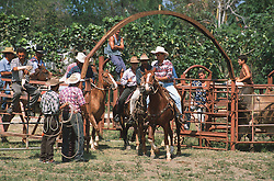 Rodeo in Cuba; with men on horseback entering the arena,