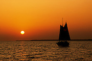 sun setting over water, large sailboat silhouette; gold/orange sky, Everglades National Park, Flamingo, FL