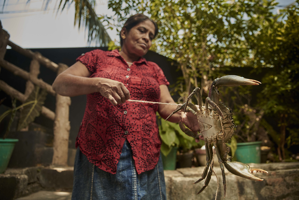 """We started with a loan of Rs.5,000 from Arthavida Intermediary Limited"", says Nanda, a female entrepreneur who began her crab exporting venture together with her husband in 2004. ""Now we get the crabs from different parts of the island, and we put them through a process of feeding in the lagoon behind our house. This makes them much bigger than the regular crabs in the market and in fact, these all go to foreign buyers!"" Nanda has expanded the business over the years, and her loan facility with Arthavida too has expanded. Her latest borrowing of Rs.125,000 has been possible because of her consistent business performance, and she intends to use the loan to expand their operation further. © Reza Akram / DFAT 2017"