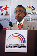 """Rev. Al Sharpton at the opening reception of The 12th Annual RainbowPUSH Wall Street Project Economic Summit """" Fallout From The Bailout: A New Day in Washington """""""