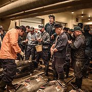 Big Fish, Little Human: Japanese Fish Markets