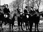 Hunt meets at Brittas, Co Dublin.    (K85)..1977..29.01.1977..01.29.1977..29th January 1977..A new year hunt meet was held today at Brittas,Co Dublin.The hunt started at Brittas Lodge..Image shows cheerful riders getting ready to start the Brittas Hunt.