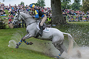 MACHISMO STAR ridden by Tyler Cassells at Bramham International Horse Trials 2016 at  at Bramham Park, Bramham, United Kingdom on 11 June 2016. Photo by Mark P Doherty.