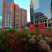 Green roof at downtown Kansas City's Power and Light District with partial view of KC high-rises and the Prairie Logic boxcar performance venue.