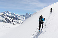 Zwei Alpinisten beim Aufstieg in der Flanke des Louwihorns mit Blick auf die Gr&uuml;n- und Walliser Fiescherh&ouml;rner, Wallis, Schweiz<br /> <br /> Two alpinists are climbing up the slope of Louwihorn with the Gr&uuml;n- and Walliser Fiescherh&ouml;rner in sight, Wallis, Schweiz