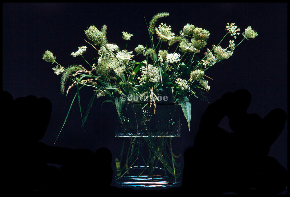 Still life of wildflowers Queen Anne?s Lace in a glass