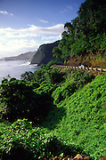 Driving, Hana Road, Maui, Hawaii<br />