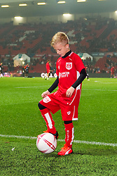 Mascot at Ashton Gate Stadium for the EFL Cup game between Bristol City and Hull City on 26 October 2016 in Bristol, England - Mandatory by-line: Paul Knight/JMP - 25/10/2016 - FOOTBALL - Ashton Gate - Bristol, England - Bristol City v Hull City - EFL Cup