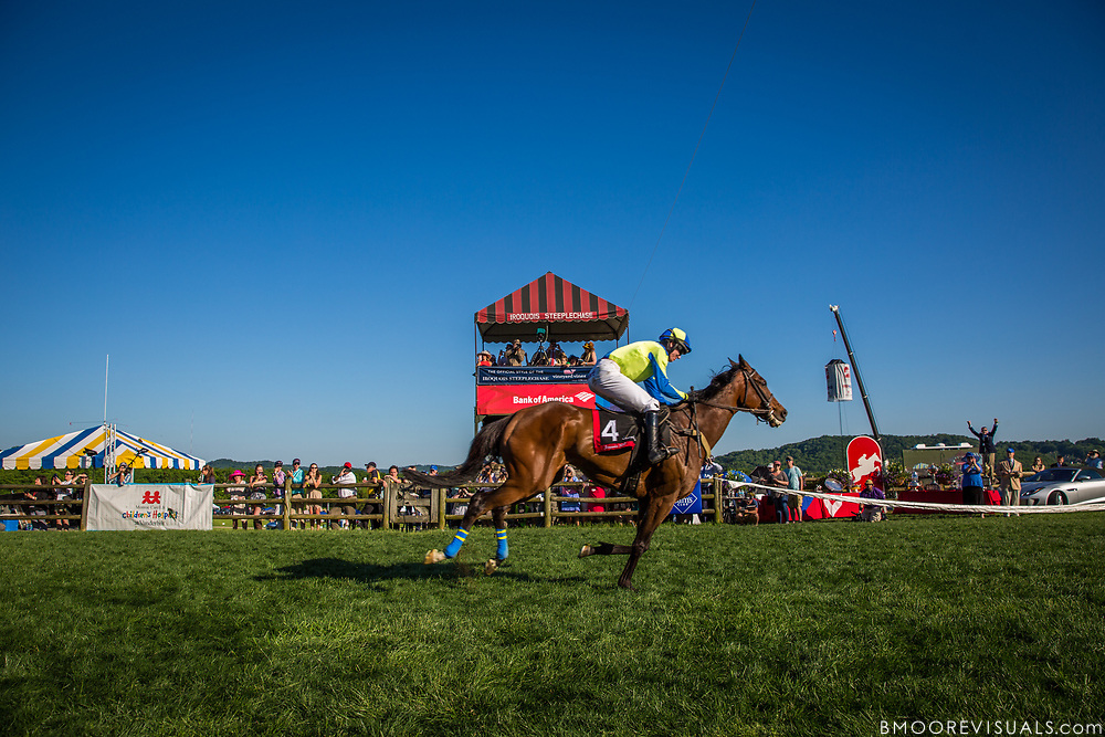 The Iroquois Steeplechase on May 13, 2017 at Percy Warner Park in Nashville, Tennessee