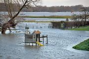 Nederland, Nijmegen, ooijpolder, 7-1-2018 Het waterpeil van de rivier de Waal stijgt weer. De uiterwaarden lopen onder. Het vee is naar hoger land gedreven. De tuin met glijbaantje van dit buitendijks liggende huis is ondergelopen.Foto: Flip Franssen