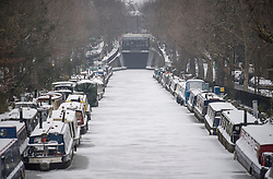 © Licensed to London News Pictures. 01/03/2018. London, UK. Regents Canal frozen over and canal boats covered in snow in Little Venice, North London as the capital continues to be hit by extreme winter conditions. Large parts of the UK are experiencing disruption as freezing temperatures continue. Photo credit: Ben Cawthra/LNP