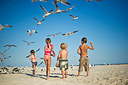 Children feed sea gulls on the beach.