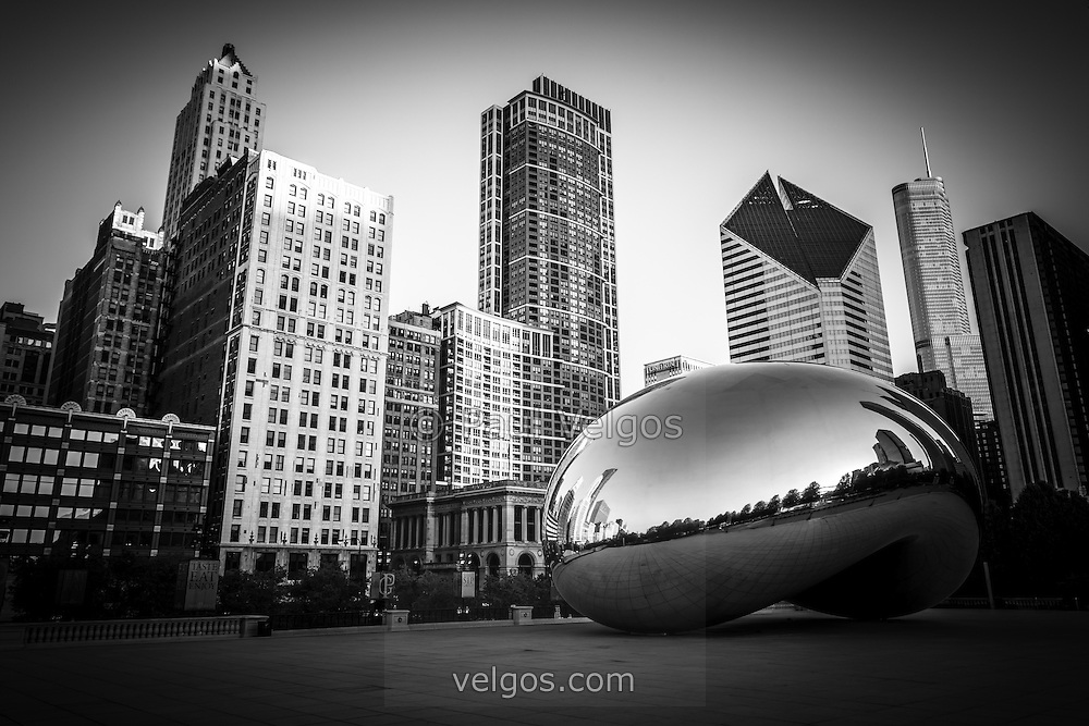 Chicago Cloud Gate The Bean Sculpture Skyline Buildings In Black And White