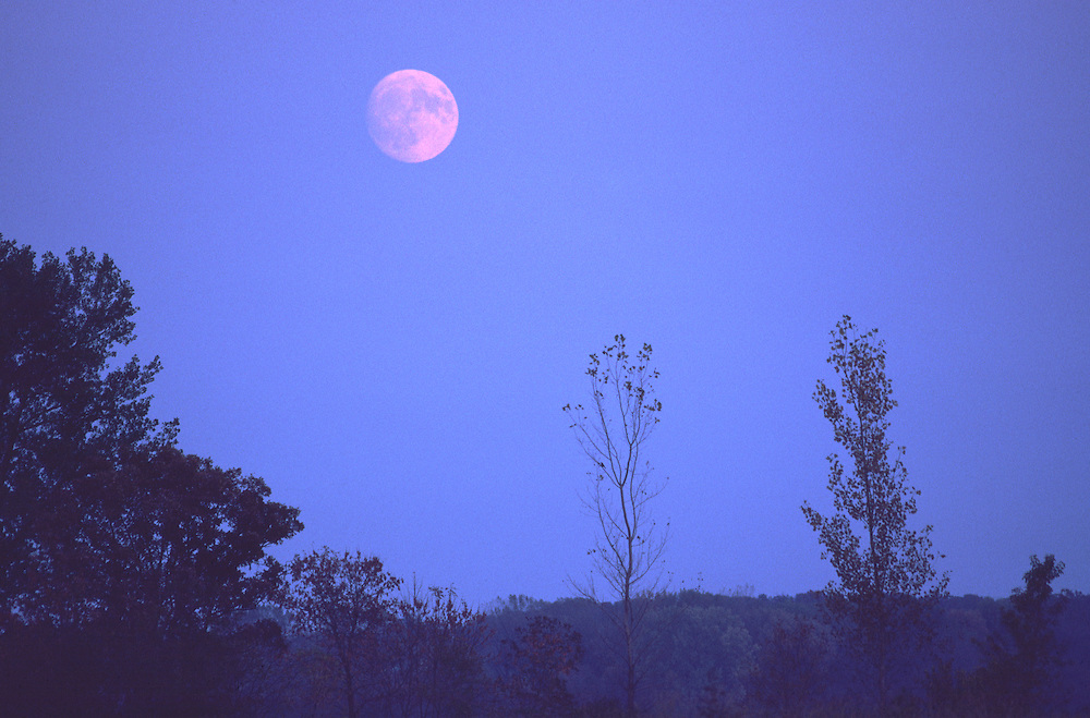 Moonrise, Lake Farm Park