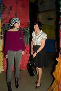 ANNA BLESSMAN; ALICE RAWTHORN, The Hayward Gallery 40th birthday Gala. hayward Gallery. South Bank. 9 July 2008 *** Local Caption *** -DO NOT ARCHIVE-© Copyright Photograph by Dafydd Jones. 248 Clapham Rd. London SW9 0PZ. Tel 0207 820 0771. www.dafjones.com.