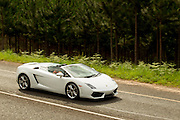 Lamborghini Gallardo photographed during a media experience held in and around White River, Mpumulanga, South Africa. Image by Greg Beadle