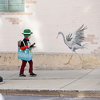 St. Patrick's Day parade in St. Charles, IL on Saturday, March 10, 2018.
