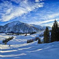 Alpine Winter Landscape. Austria, Europe