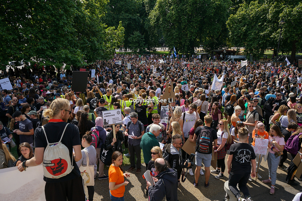 London, UK. 2nd September 2017. Thousands assembly in Hype Park and march to Whitehall and protect the front of MacDonald of animal cruelty.