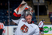 KELOWNA, CANADA - NOVEMBER 25: Jordan Hollett #31 of the Medicine Hat Tigers warms up against the Kelowna Rockets on November 25, 2017 at Prospera Place in Kelowna, British Columbia, Canada.  (Photo by Marissa Baecker/Shoot the Breeze)  *** Local Caption ***