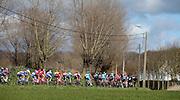 BELGIUM  / BELGIE / BELGIQUE / HARELBEKE / CYCLING / WIELRENNEN / CYCLISME / KLASSIEKER / 59TH RECORD BANK E3 HARELBEKE / UCI WORLD TOUR / UCI WORLDTOUR /  HARELBEKE TO HARELBEKE 206 KM / LANDSCHAP / LANDSCAPE / PELETON / PLADUTSE /