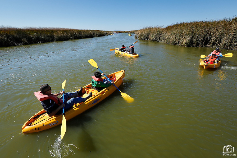 Visitors enjoy kayaking adventures through the marshlands during Santa Clara County Parks Day on the Bay event at Alviso Marina County Park in Alviso, California, on October 13, 2013. (Stan Olszewski/SOSKIphoto)