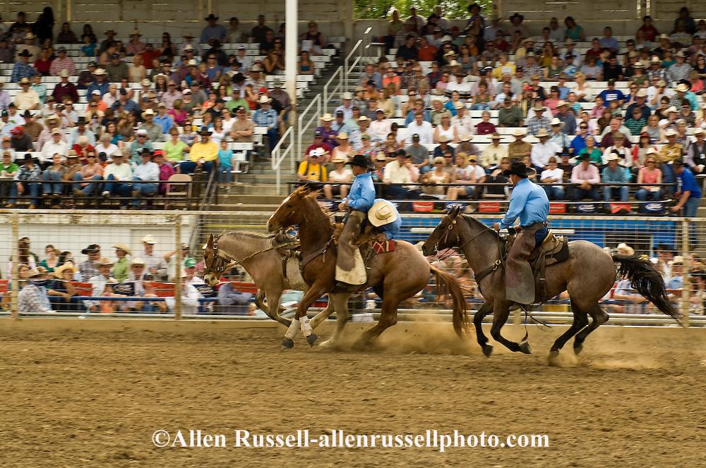 Pickup men Jay Shaw and Lynn Ashley pick up saddle bronc, Miles City Bucking Horse Sale, Montana