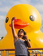 A woman takes selfie as a giant rubber duck,  the brainchild of Dutch artist Florentijn Hofman's six-story-tall floating ``Rubber Duck'' sculpture, passes under the Vincent Thomas Bridge, arrival at Port of Los Angeles, Wednesday August 20, 2014.(Photo by Ringo Chiu/PHOTOFORMULA.com)