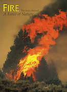 KC Publications, Fire, The Story Behind the Force of Nature, Cover