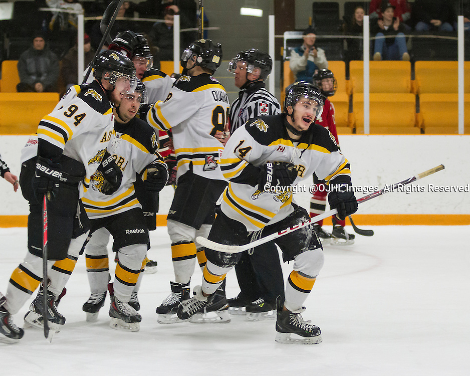 AURORA, ON - Feb 27, 2015 : Ontario Junior Hockey League game action between the Aurora Tigers and the Newmarket Hurricanes.  Game one of the best of seven series. John Curran #14 of the Aurora Tigers celebrates the goal.<br /> (Photo by Stephen DiNallo / OJHL Images)