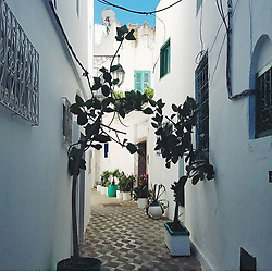 Study Abroad in Tangier, Morocco 07/05/17