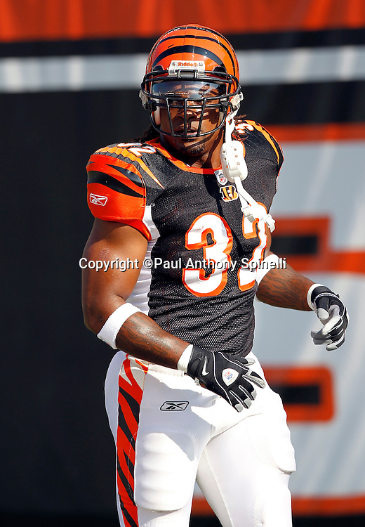 Cincinnati Bengals running back Cedric Benson (32) looks on during the NFL week 8 football game against the Miami Dolphins on Sunday, October 31, 2010 in Cincinnati, Ohio. The Dolphins won the game 22-14. (©Paul Anthony Spinelli)
