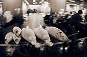 Tsukiji selects