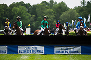 April 29, 2017, 22nd annual Queen's Cup Steeplechase. Horses and riders look at a fence before the Queen's Cup Allowance Hurdle race